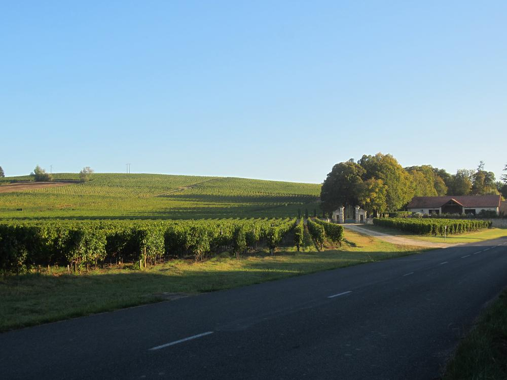 South facing vineyards at Beguey, Bordeaux