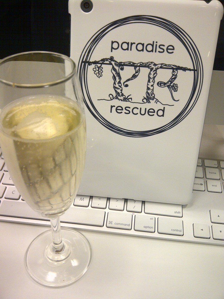 The Paradise Rescued iPadMini takes a break before flying home!