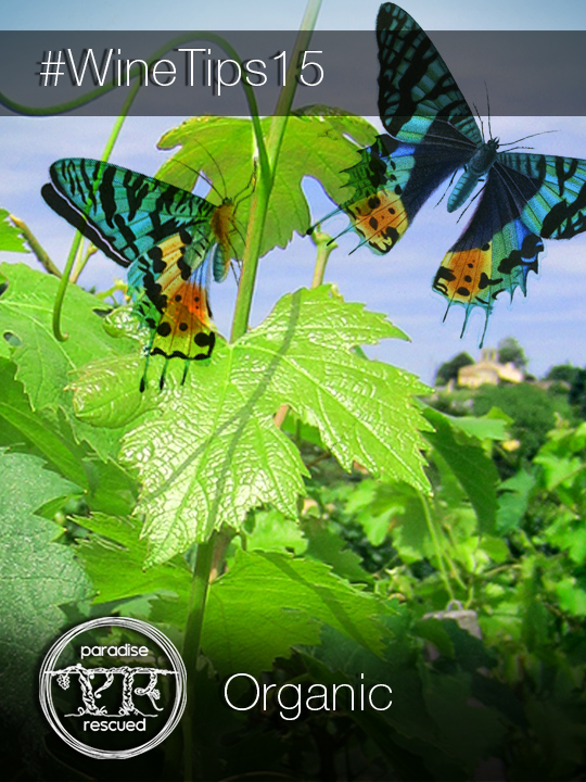 Organic viticulture and wine making