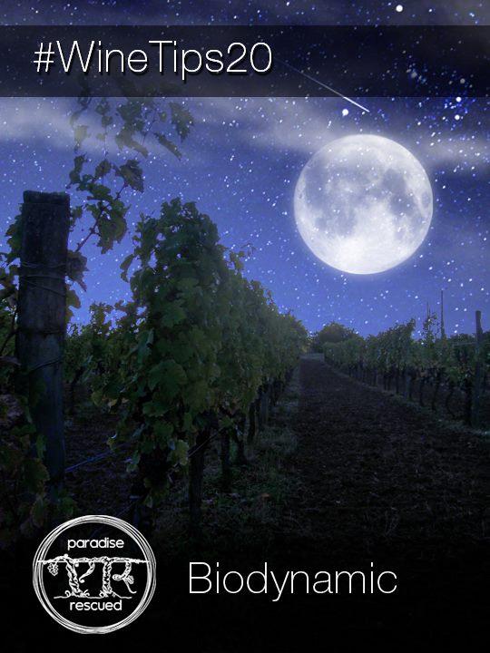 WineTips #20 - Biodynamic