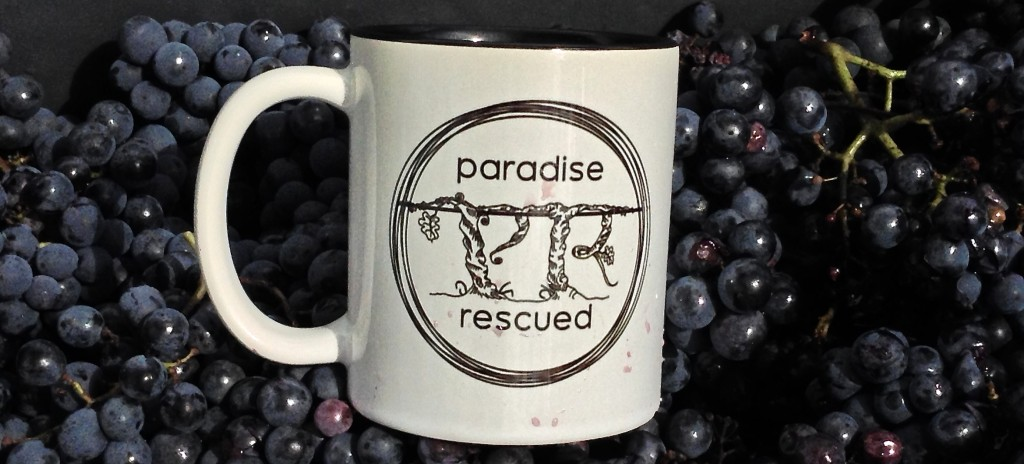 Our Paradise Rescued brand mug captured in a carte of hand picked Cabernet Franc grapes