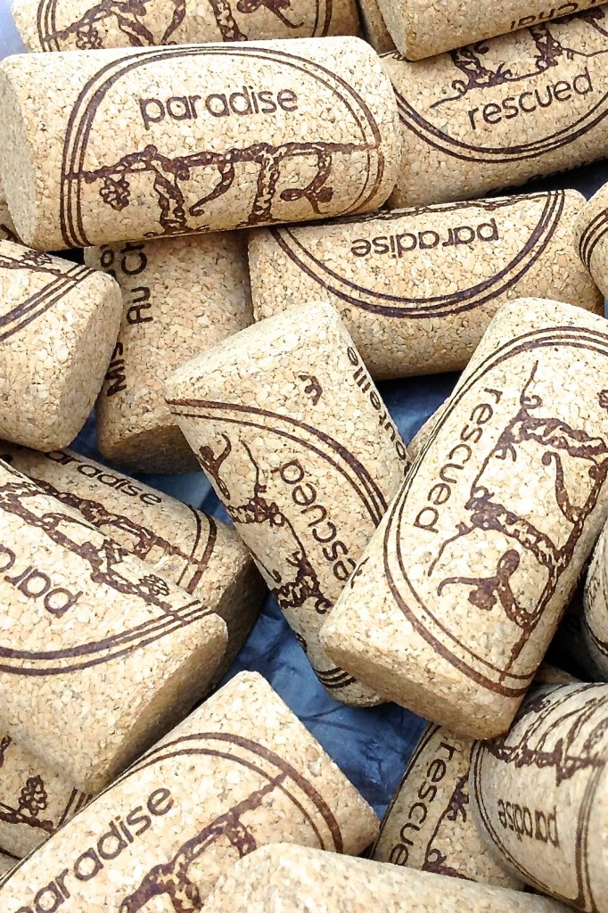 Paradise Rescued branded BTEC taint free technical corks