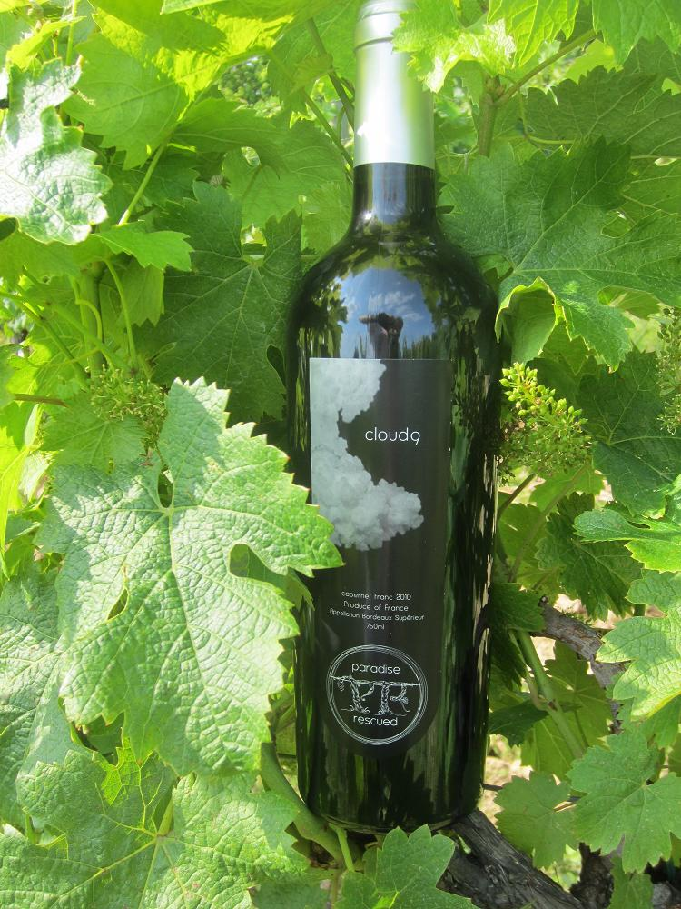 Cloud9 100% Bordeaux Cabernet Franc