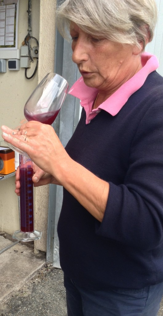Pascale assessing the young wine