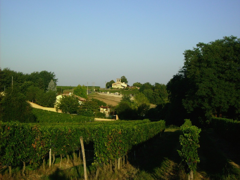 The view that inspires us everyday. The Hourcat Sud vineyard and Cardan church.