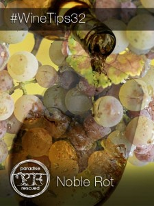 #WineTips32 - Noble Rot